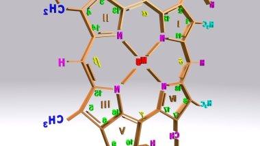Chlorophyll C molecular structure formula