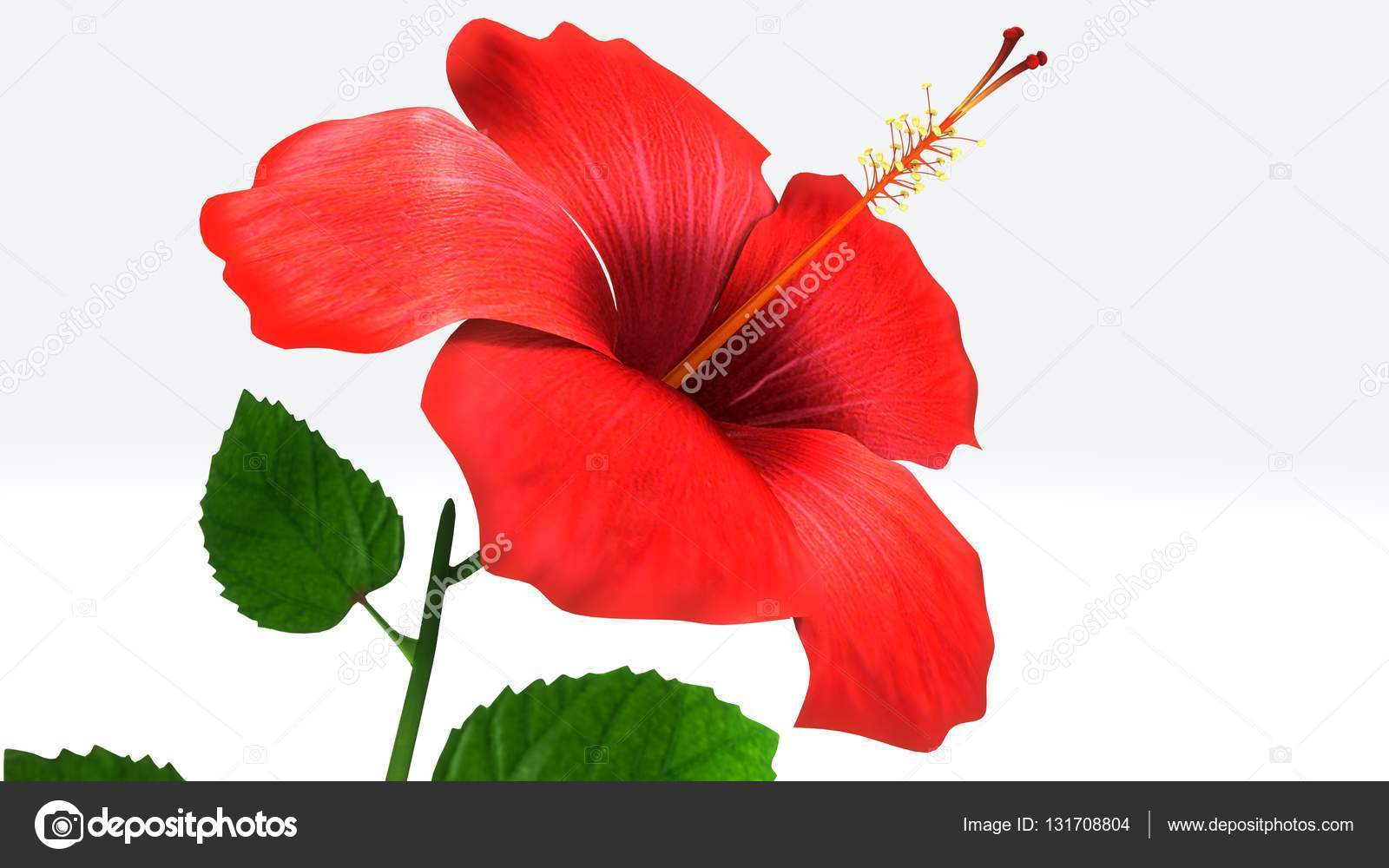 Hibiscus 3d Illustration Stock Photo Sciencepics 131708804