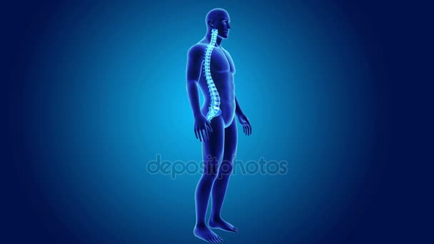 parte del corpo di scheletro