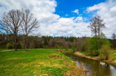 spring landscape by the river