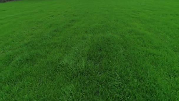 flying over green fields farm