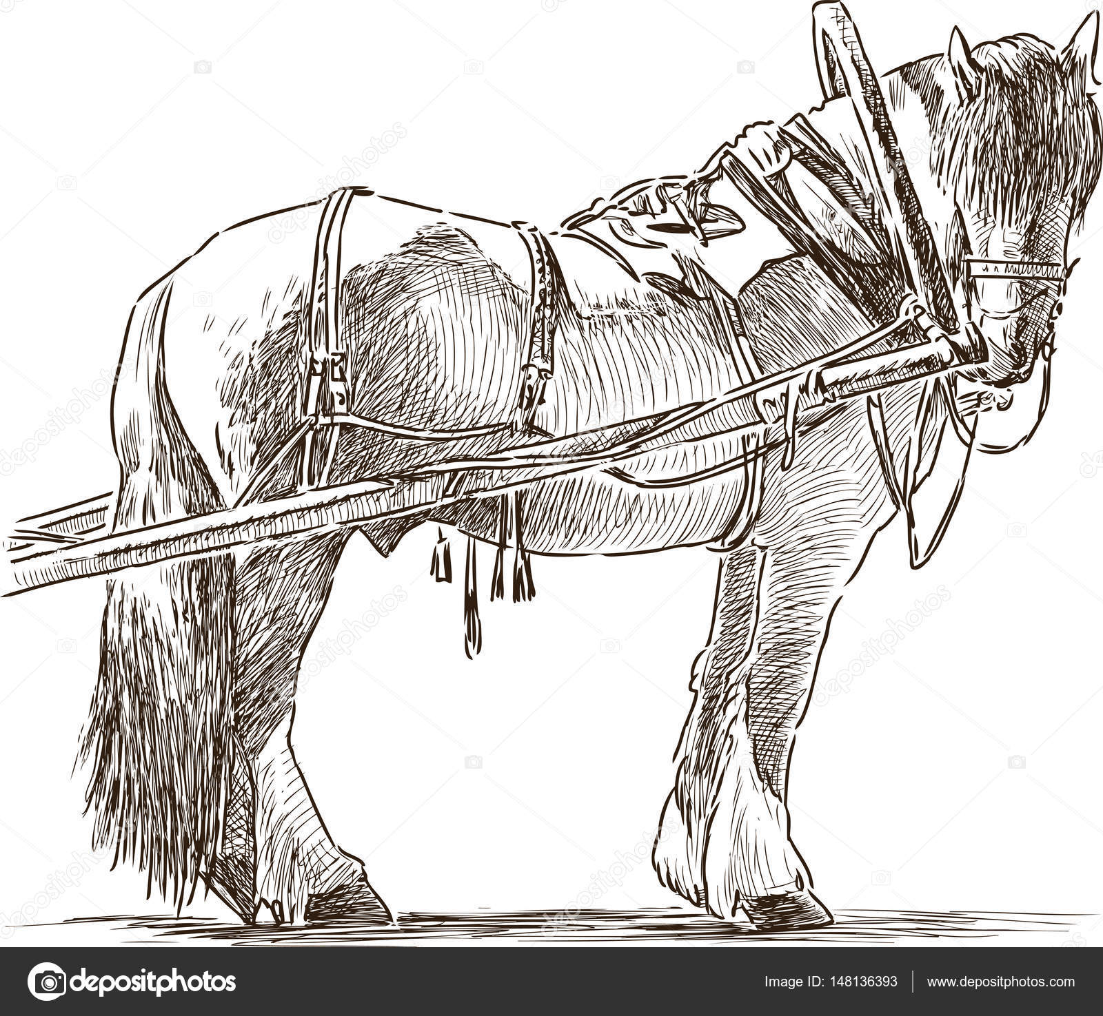 Pictures: workhorse | Sketch of a harnessed workhorse