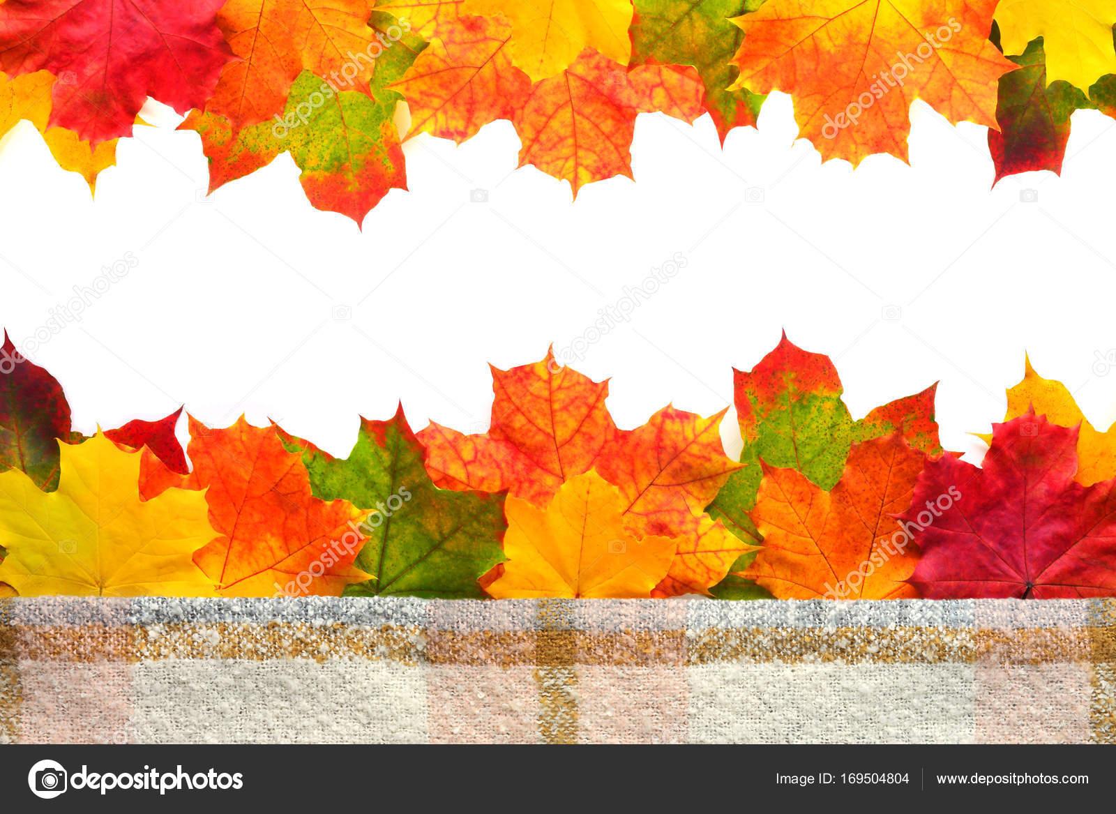 autumn leaves border stock photo kronalux 169504804