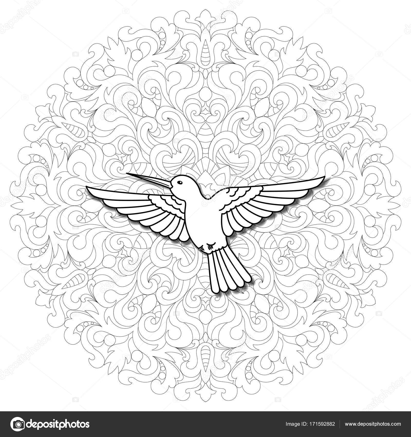 Hummingbird mandala composition stock vector kronalux 171592882 abstract pattern with colibri and mandala on white background hummingbird modern symbol coloring page vector by kronalux biocorpaavc Images