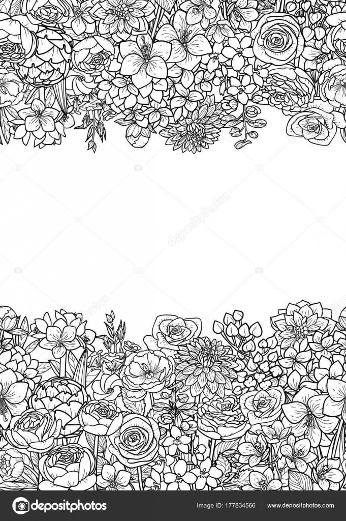Flores del jardín fronteras — Archivo Imágenes Vectoriales ...