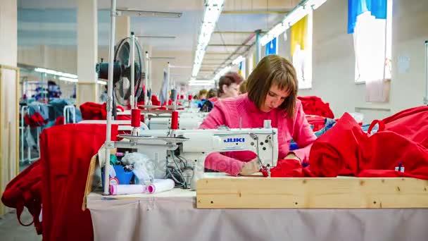 649c492c8 Группа работников завода, пошив одежды в швейной фабрики. Timelapse–  стоковое видео