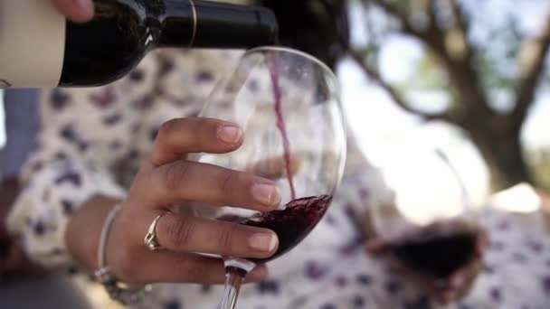 Chlápek v modré košili nalévá víno z láhve do bakalu Krásná a mladá dívka v bílých šatech a sedí na pikniku v horkém letním dni, drží v ruce dvě sklenice červeného vína