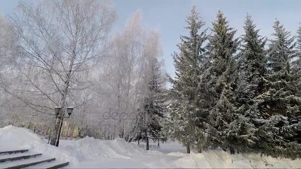 Winter park, a fagyos süt a nap