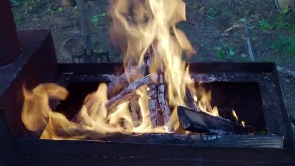 Jasný oheň na grilu v večer na přírodu. 4k