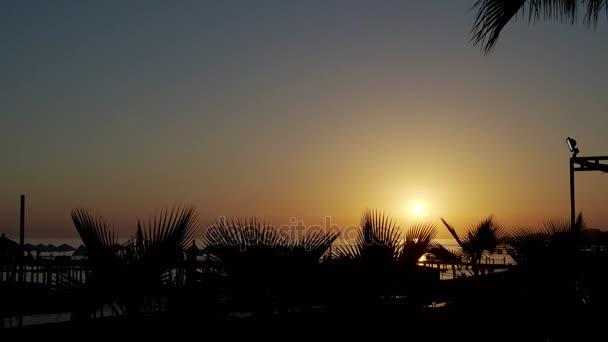 Palmy a západ slunce v Turecku