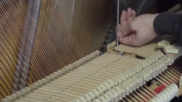 Ladění klavíru šroubovákem. Detailní záběr záběr ladění klavíru