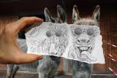 Fotografie Eine Hand hält ein Blatt Papier vor zwei Eseln und das Papier zeigt eine Karikatur mit zwei verschiedenen Ausdrücken für die Tiere, wobei der eine lächelt und der andere ein lustiges Gesicht zieht.