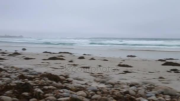 Vlny oceánu stříkající na oblázkové pláži