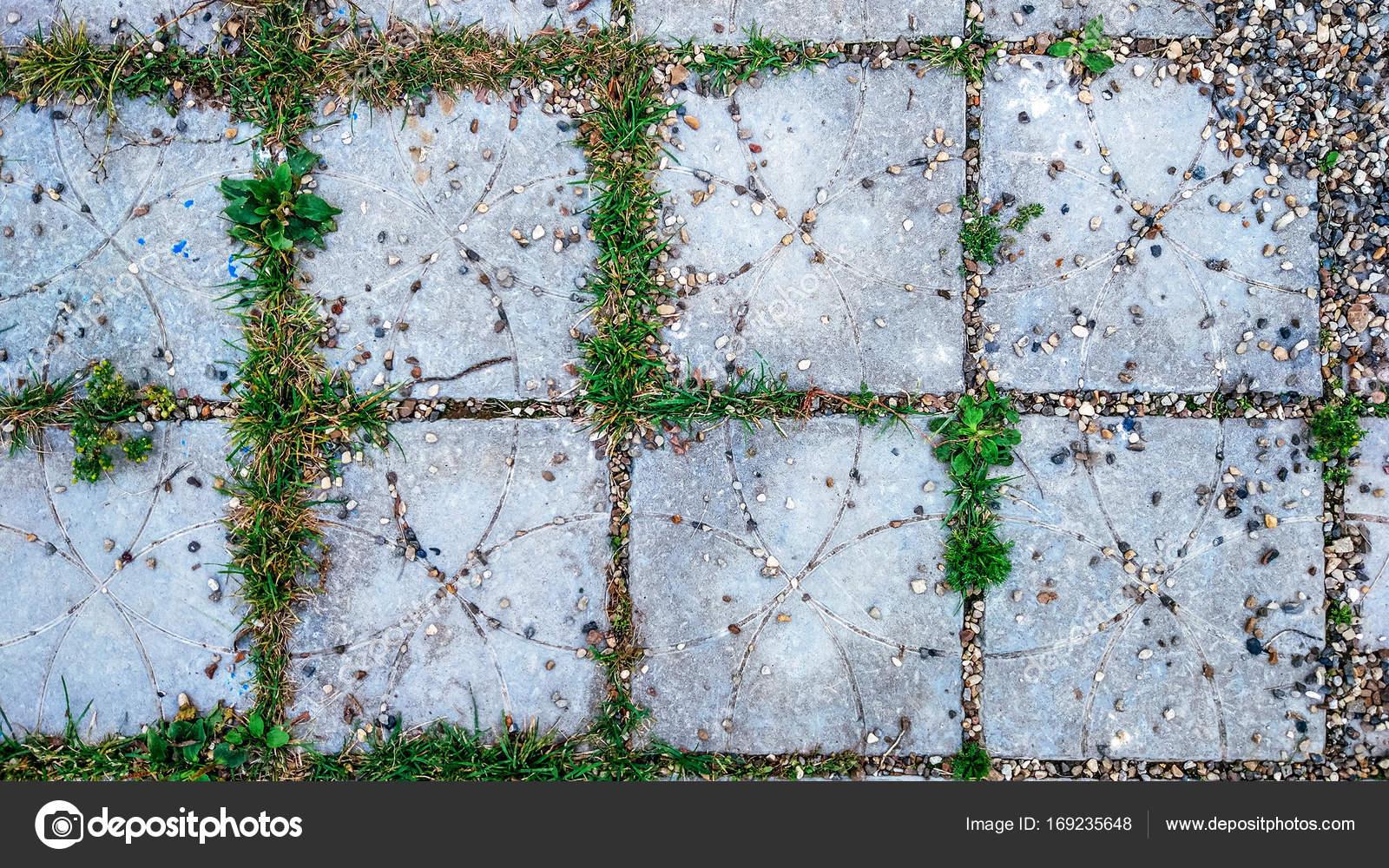 Piastrella in città con piccole pietre ed erba germogli tra le