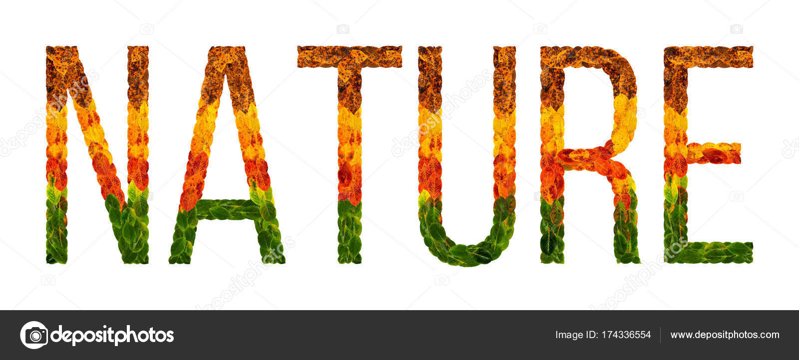 Word Nature Written With Leaves White Isolated Background Banner