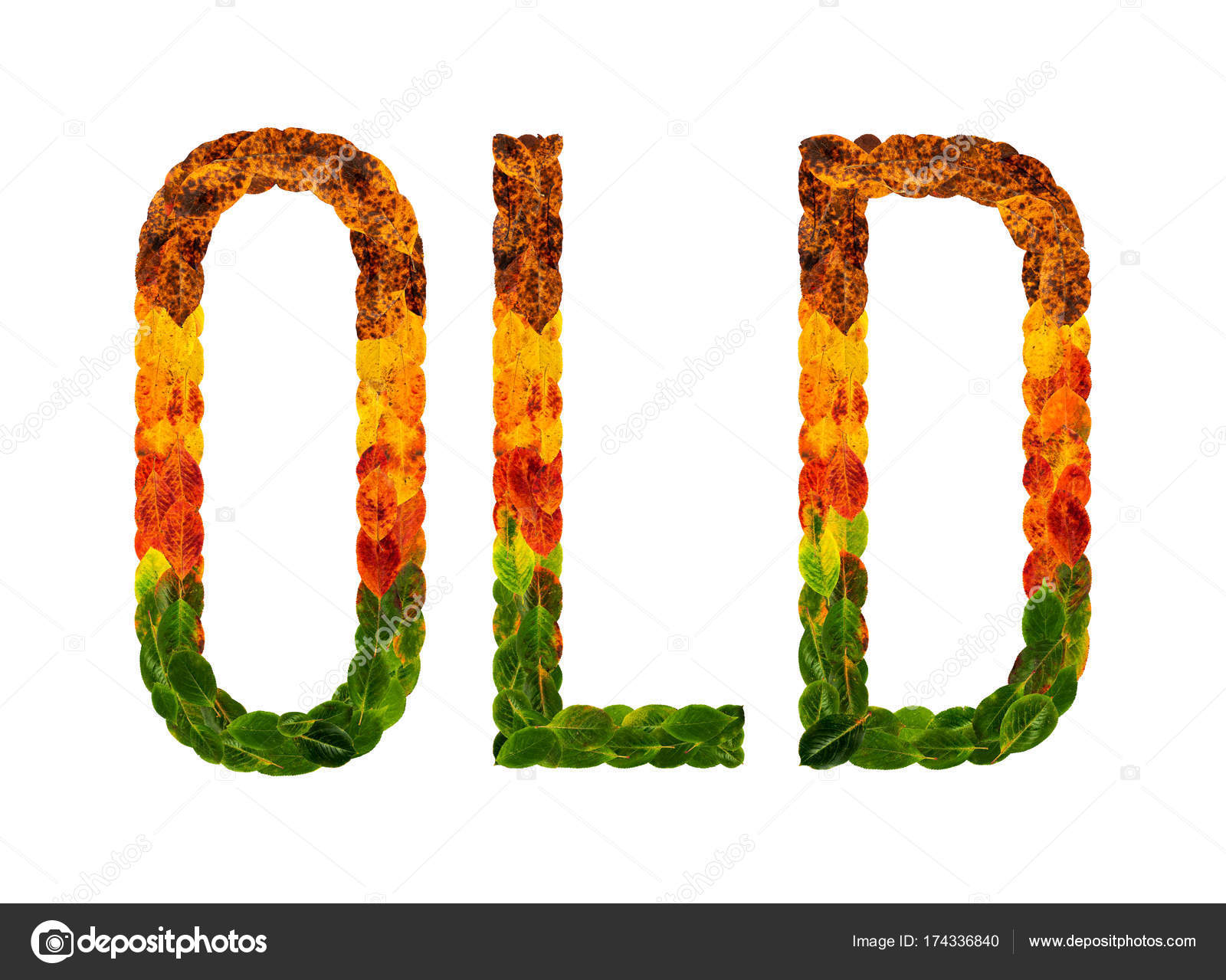Word Old Written With Leaves White Isolated Background Banner For Printing Creative Illustration Of