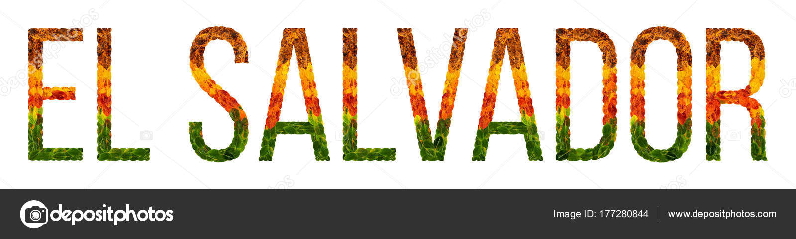 Word El Salvador Country Is Written With Leaves On A White Insulated