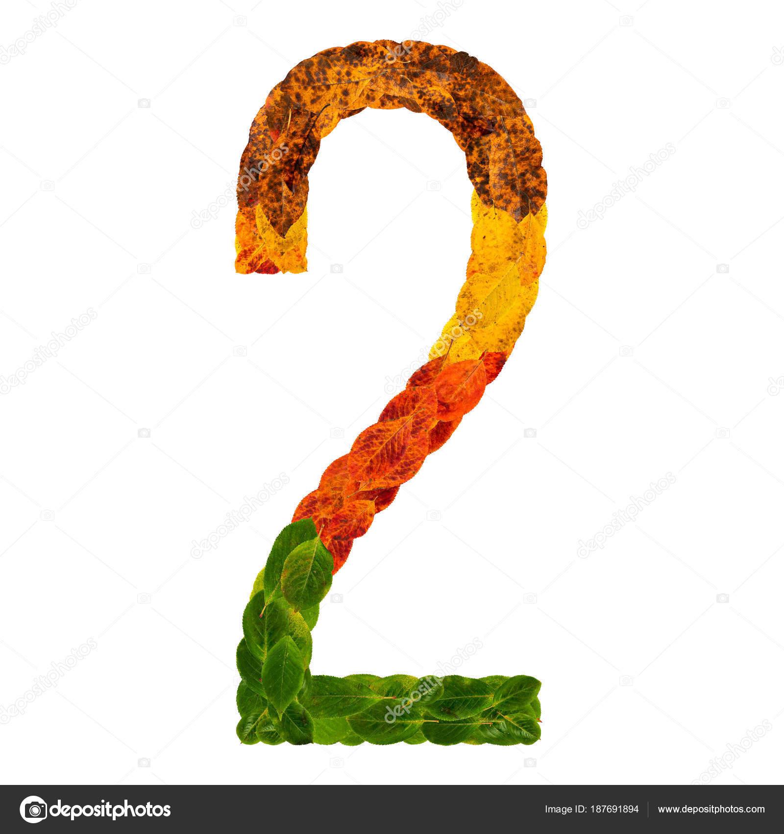 d268b23cd Na podzim listy světlé číslo dvě 2. Přírodní multi vrstvy žijící listy  izolované na bílém pozadí. Barevný charakter písma písmeno abecedy.