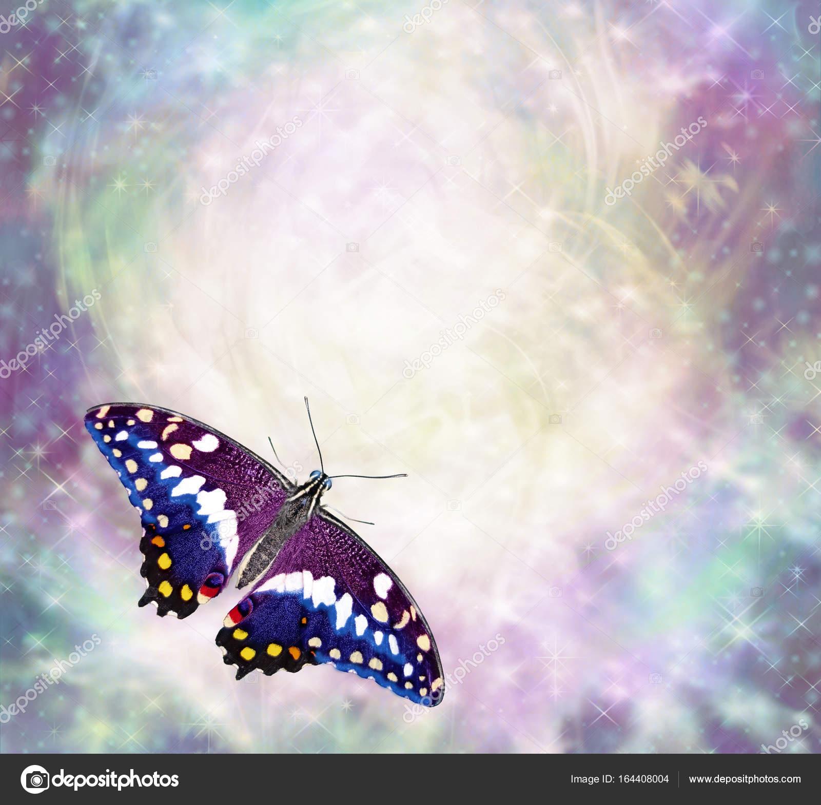 Imágenes Mariposas Con Mensajes Frontera De Los Mensajes De