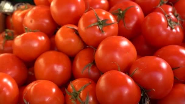 sklizeň rajčat pro zprávy o sklizni potravin