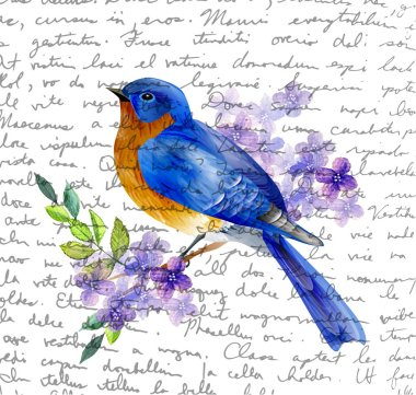 Bird of Spring vector