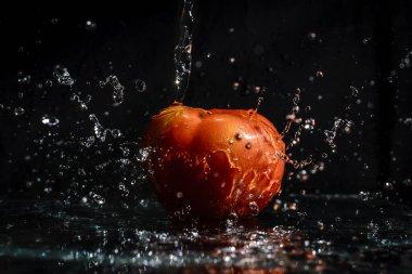 """Картина, постер, плакат, фотообои """"agua caindo em tomate co como preto ."""", артикул 360203164"""