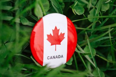 Macro closeup shot of round circle badge with red white canadian flag maple leaf lying in grass on green forest nature background outside, Canada day celebration