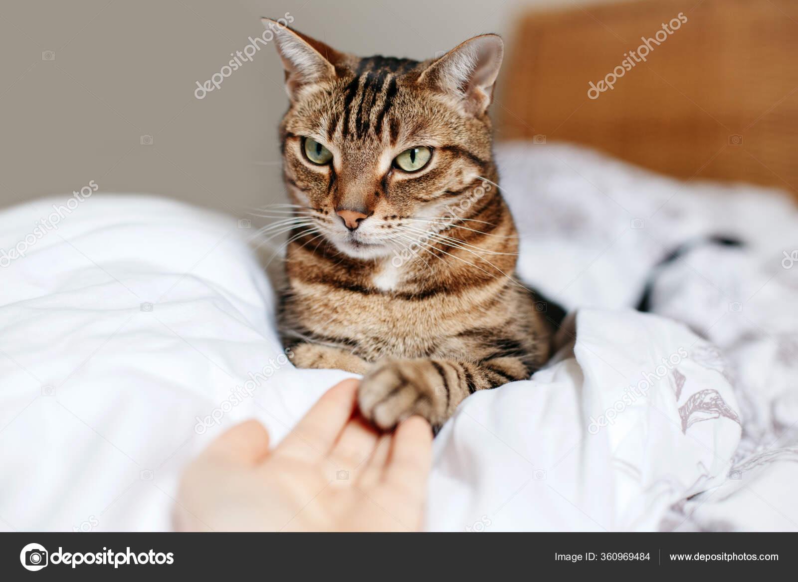 Mann frau hand berührt an der Körpersprache beim