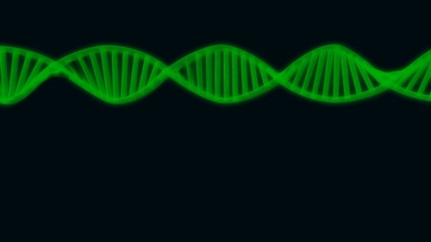 3D semitransparent green DNA chain rotation abstract on blue background. Rotating strand of DNA on Black background