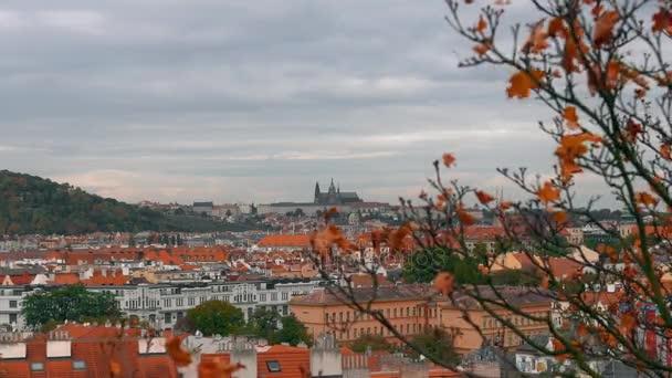 Letecký pohled na staré město architektury s červenou střech v Praze, Česká republika. Katedrála svatého Víta v Praze