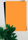 obrázek na pozadí s oranžovou, černou a bílou a zeleným listem ve spodním rohu