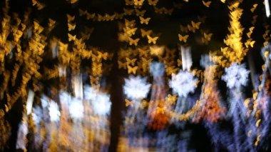 Butterfly Bokeh, Christmas light in nighttime