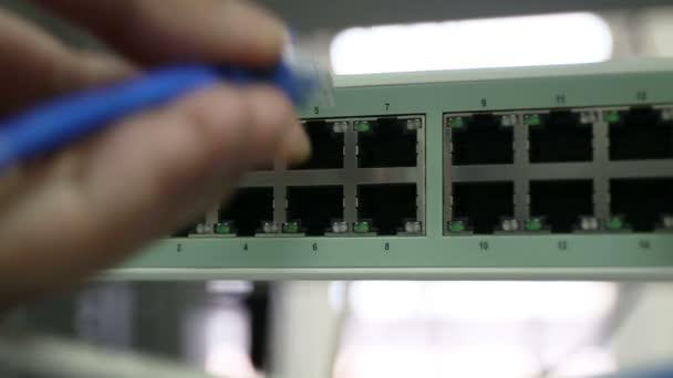 ruka držící Rj45 nebo Cat5 připojení k přepínači sítě ethernet