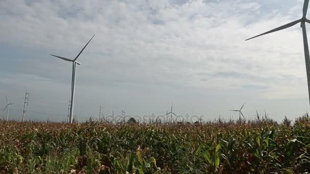 Energia pulita e rinnovabile, lenergia eolica