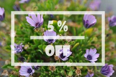 Spring sale 5 percent