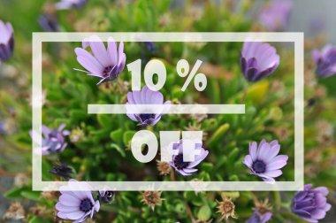 Spring sale 10 percent
