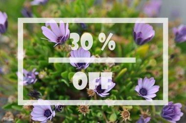 Spring sale 30 percent