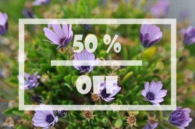 Spring sale 50 percent