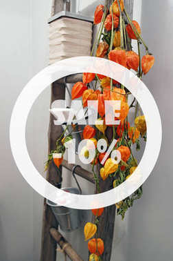 Autumn sale 10 percent