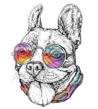 Hand drawn vintage retro hipster style sketch of funny French Bulldog stock vector