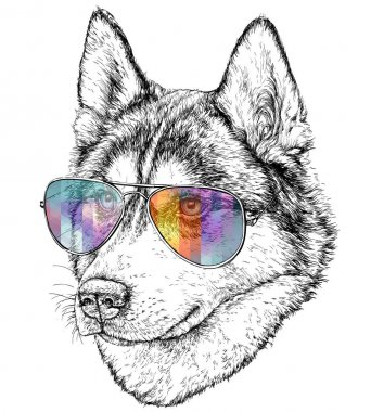wolf with colored eyeglasses