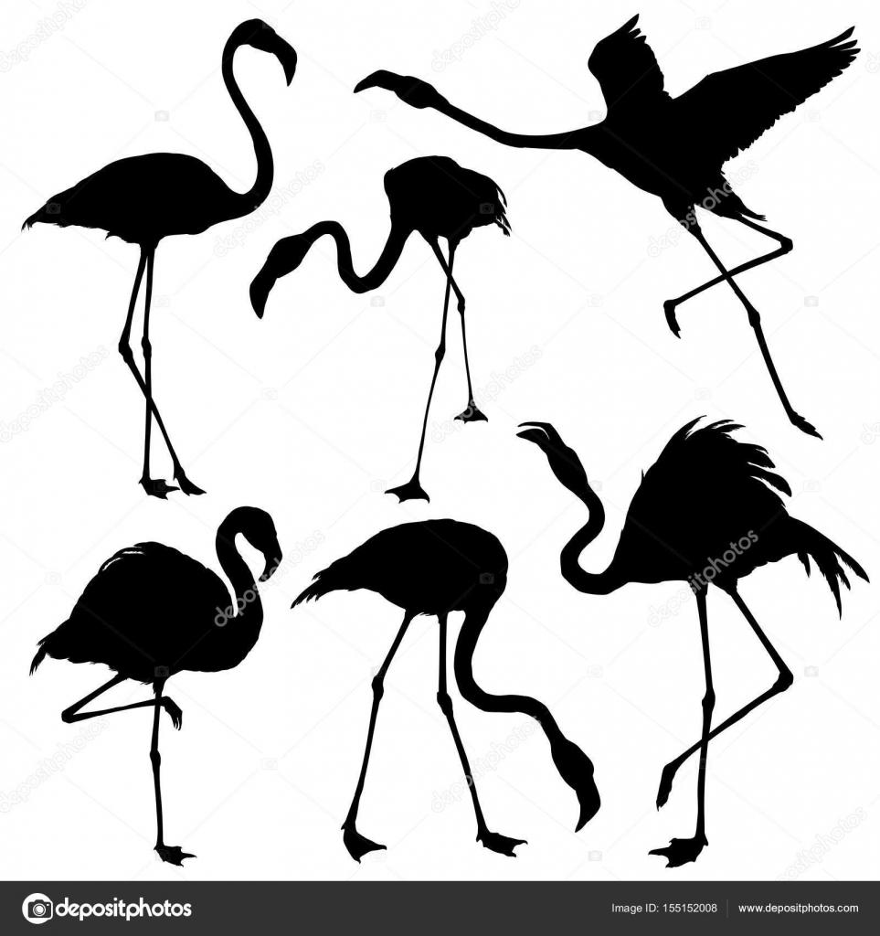 flamingo silhouette set � stock vector 169 dianapryadieva