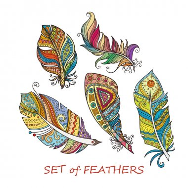 Ornate Set of Stylized and Abstract Feathers.