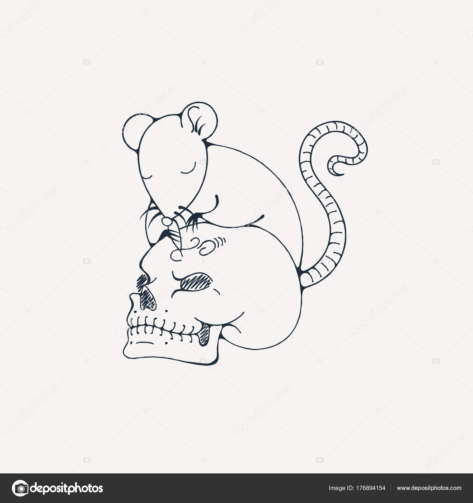Fare Ile Illüstrasyon Insan Kafatası Gravürler Boyama Sayfası