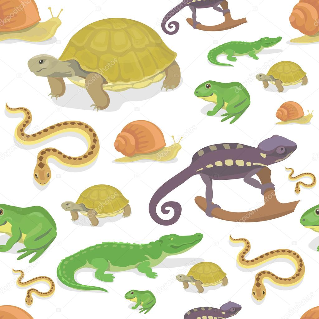 Reptile And Amphibian Seamless Pattern On White Background