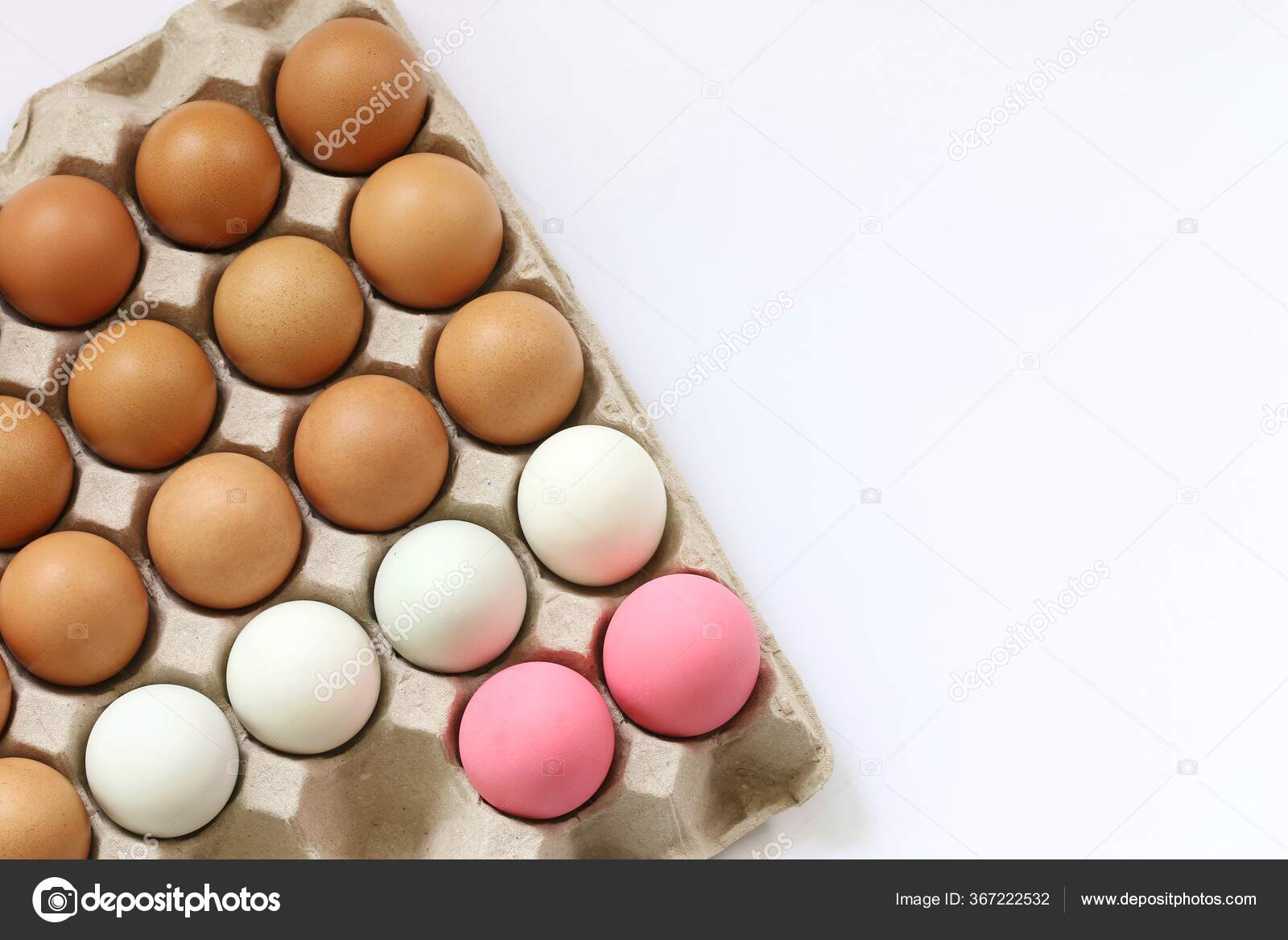 Fresh Eggs White Background Concept Food Life Abstract Indicated Differentiate Stock Photo C Sonsurikhb Gmail Com 367222532