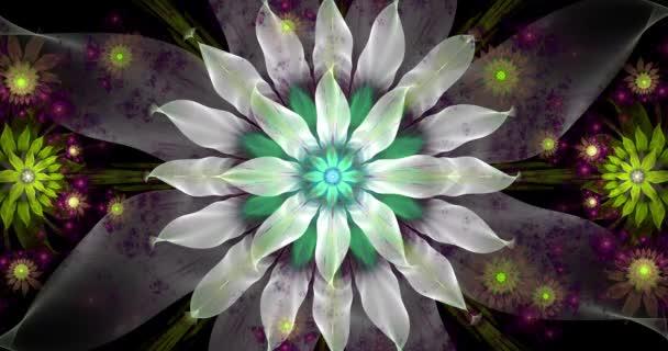 Rychlá změna barvy smyčka schopný abstraktní fraktního videa s velkými bílými centrální květiny a dekorativní hvězdy a prostor květiny kolem v zářivých barvách, 4k, 4096p, 25fps