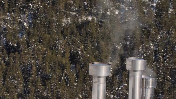 Rauchender Schornstein und verschneiter Wald