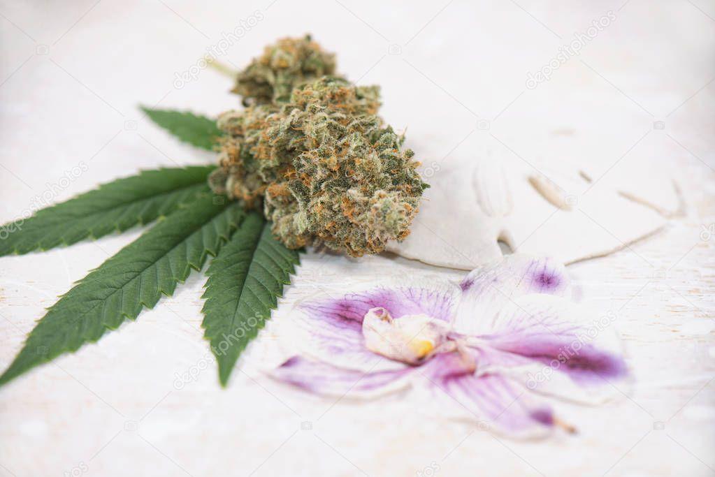 Cannabis bud detail (mangolope strain) over marijuana leaf with