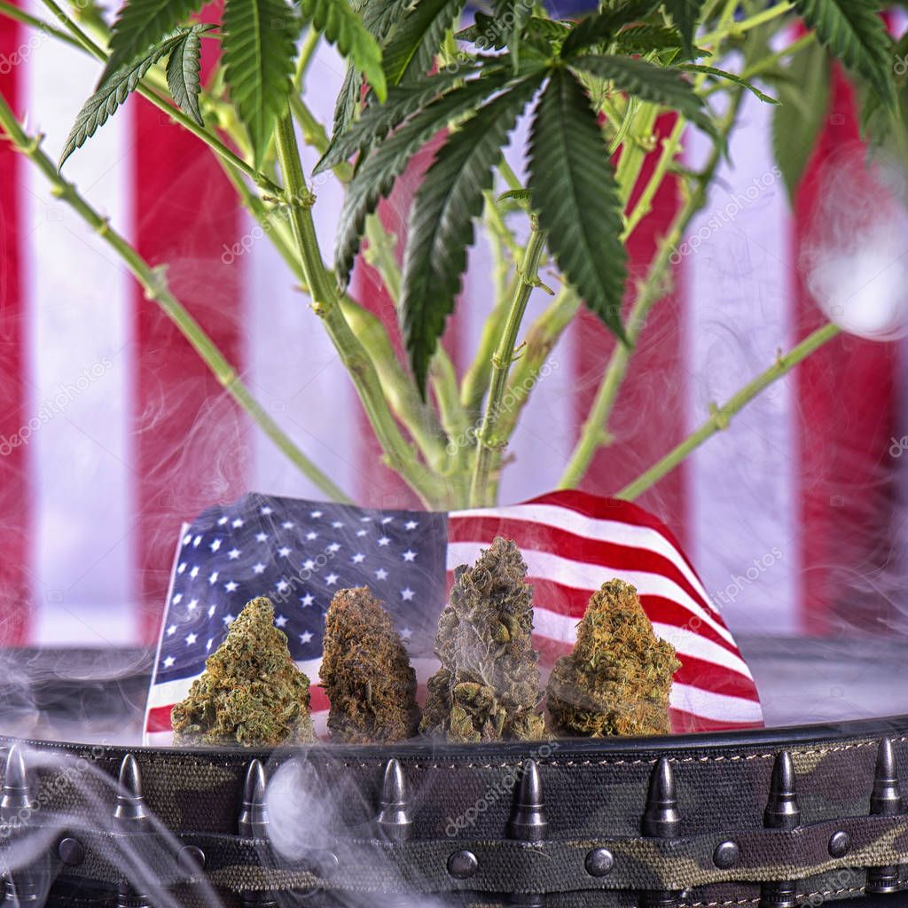 Veteran theme medical marijuana concept with buds, plant and ame